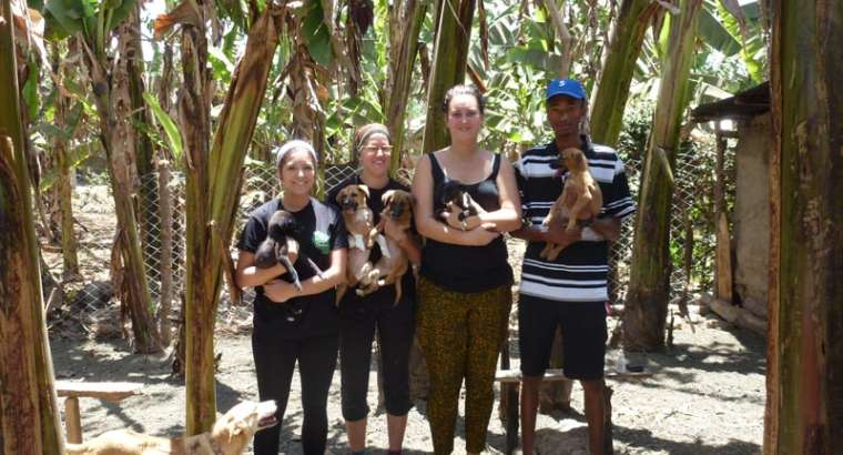 Ismael Animal Rescue Tanzania